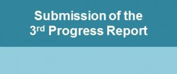 Submission of the 3rd Progress Report!
