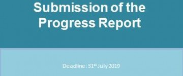 Submission of the Progress Report!